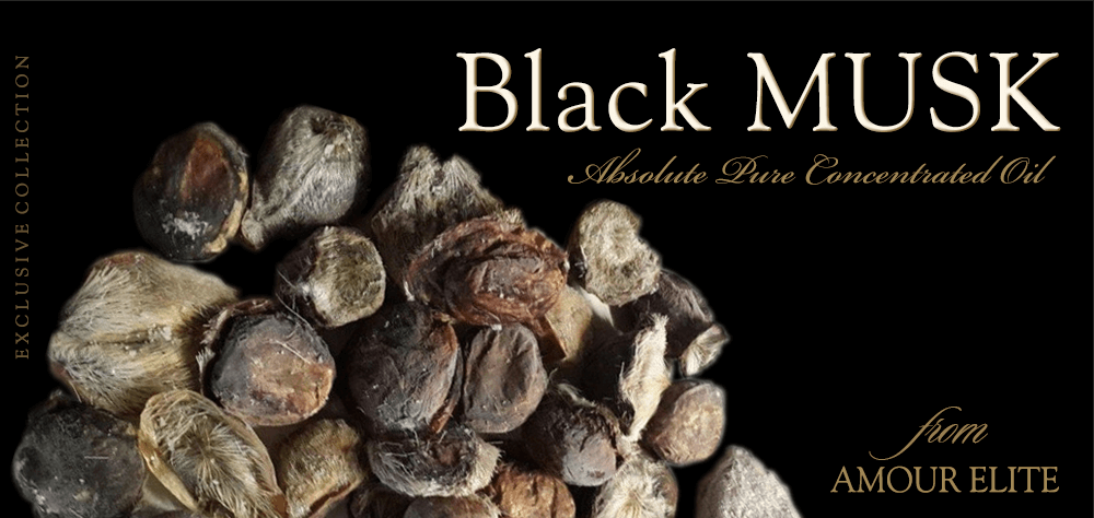 Духи-масло Amour Elite Black MUSK - Черный Мускус Кабарги. Абсолют. Мускусный Афродизиак.